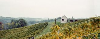 Add This Austrian Vineyard to Your List of Dream Homes