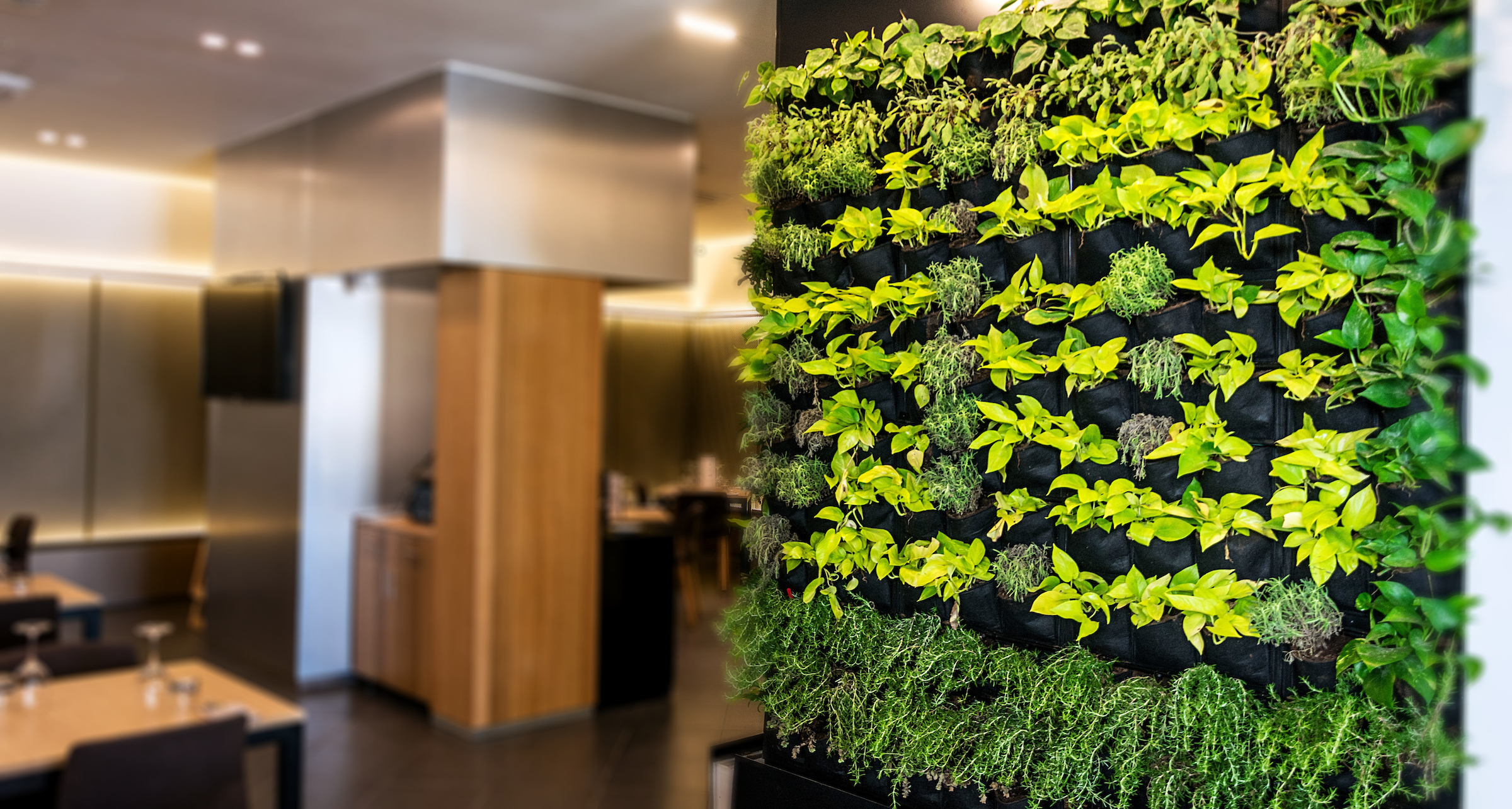 Breathtaking Living Wall Designs For Creating Your Own Vertical