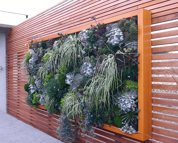 30 Breathtaking Living Wall Designs For Creating Your Own