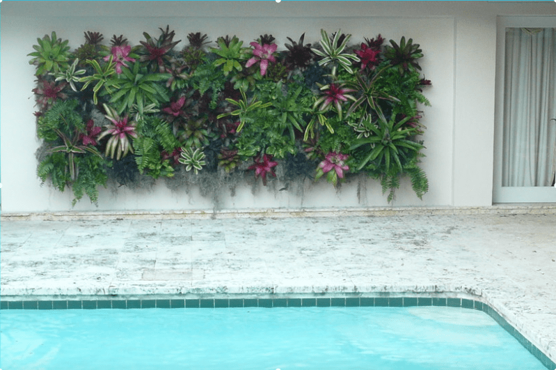 Vertical Living Wall swimming pool vertical garden - freshome.com