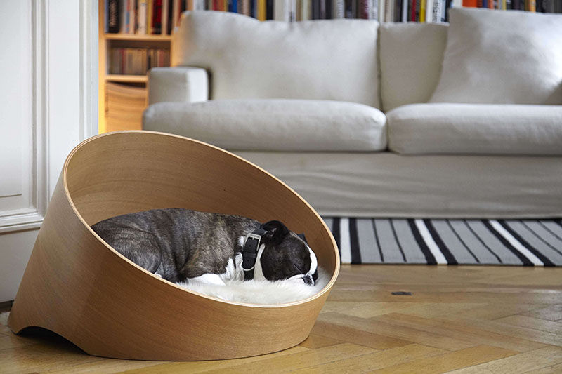 Modern Pet Products Freshome