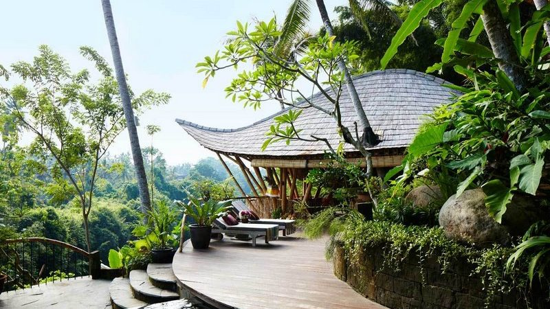 Indonesian Forest Retreat Unveils Leaf-Shaped Roofs, Grotto Pool