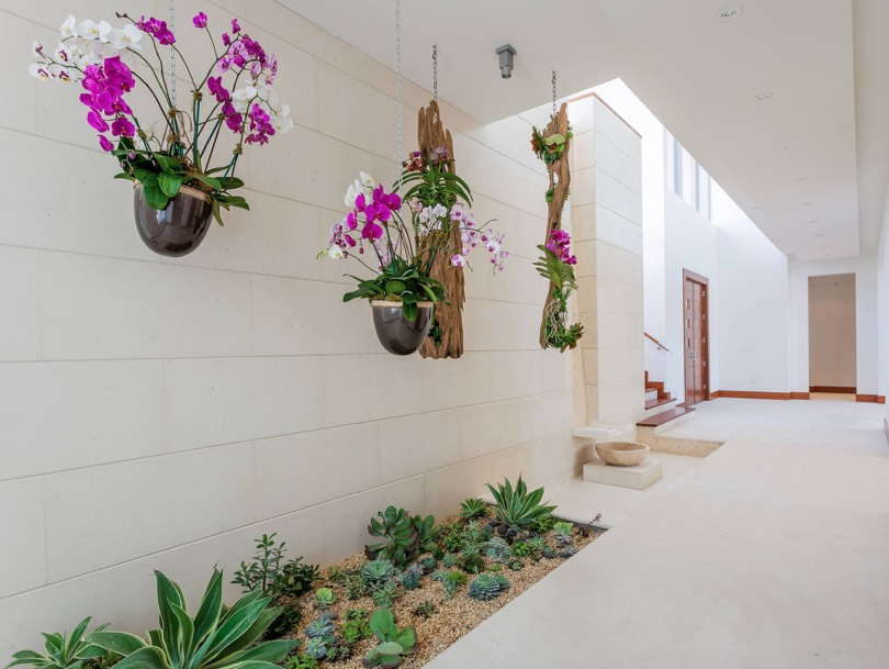 ways to hang house plants - freshome.com
