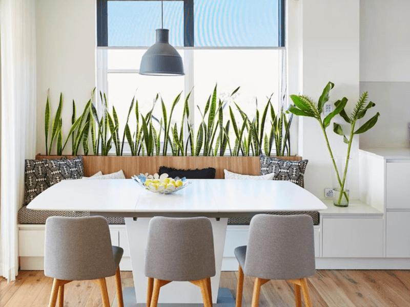 eco-friendly cleaning solutions