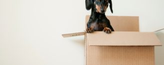 Moving Soon? Here's How to Pack for a Move like a Pro