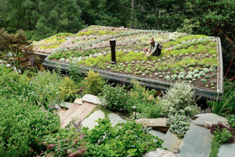 Here S Why You Ll Want A Living Green Roof On Your Home Freshome Com