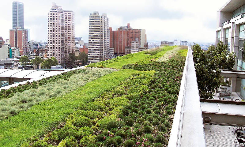 green rooftop ideas