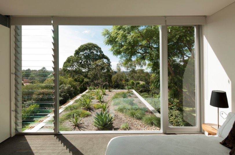green roof ideas that are drought-tolerant