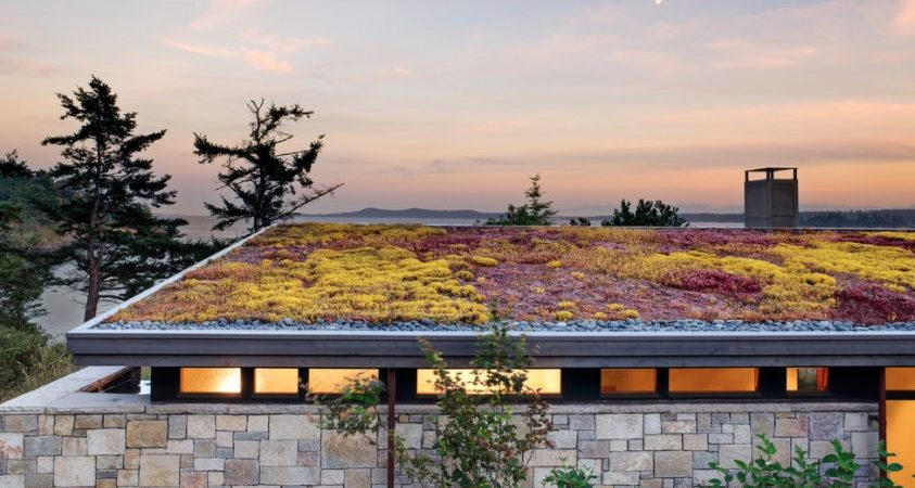 Here's Why You'll Want a Living Green Roof on Your Home