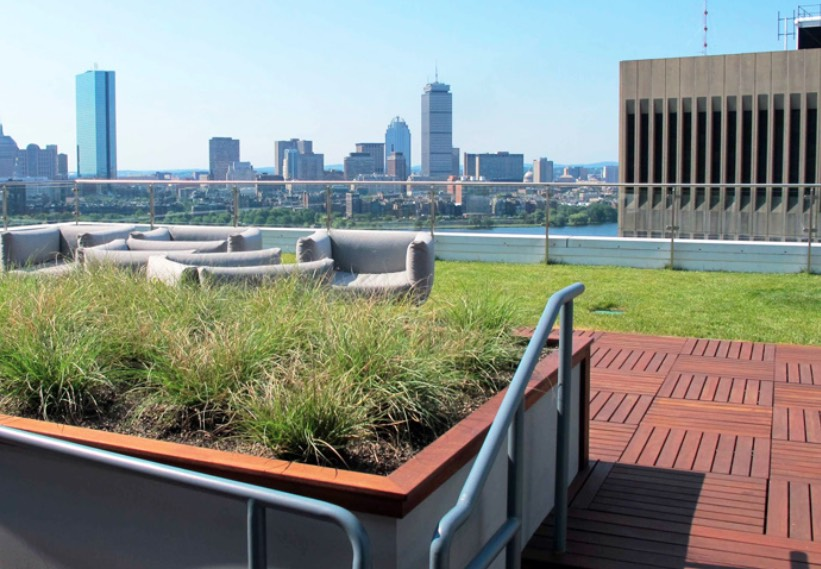 green roof ideas for a living roof garden