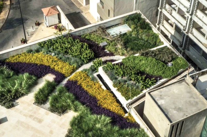 living rooftops