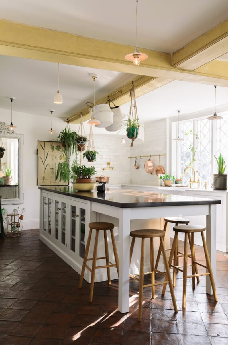 Greenery in the Kitchen Potted Plants Hanging