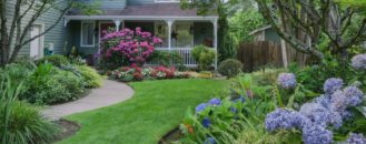 Your Lawn's Not Just Eye Candy: The Environmental and Health Benefits of Turfgrass Lawns