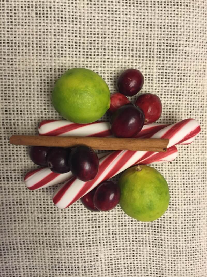 Holiday Simmer Pot Recipes Peppermint and Cranberries