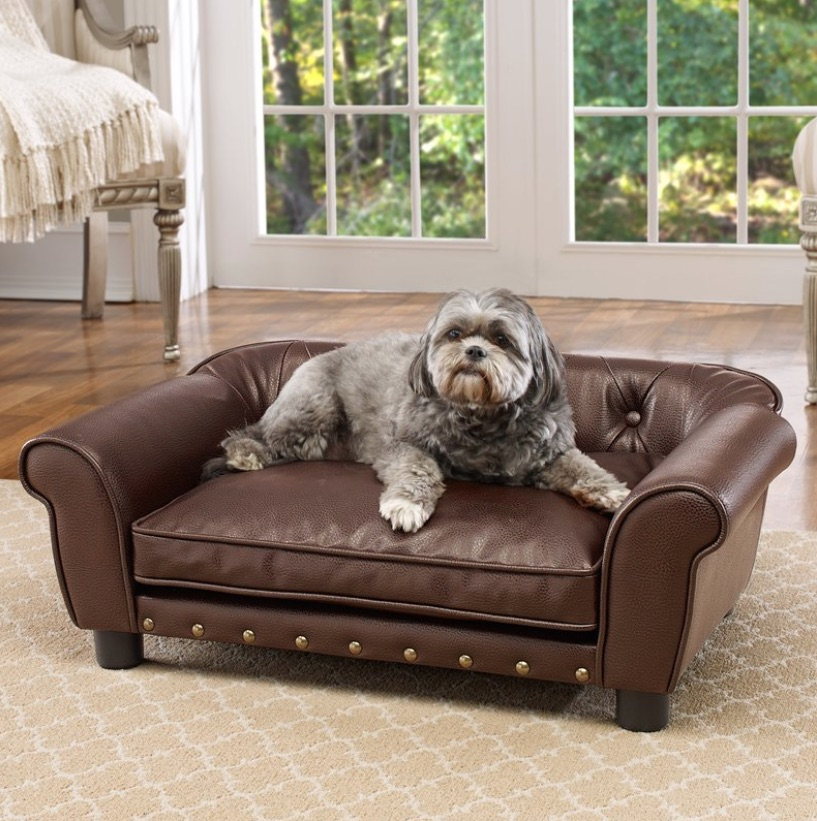 Interior Designs for Pet Lovers Dog Sofa