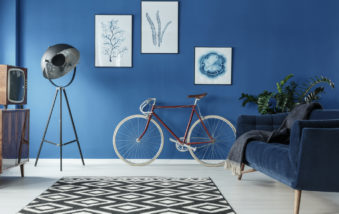These Are The 2019 Color Trends We're Loving