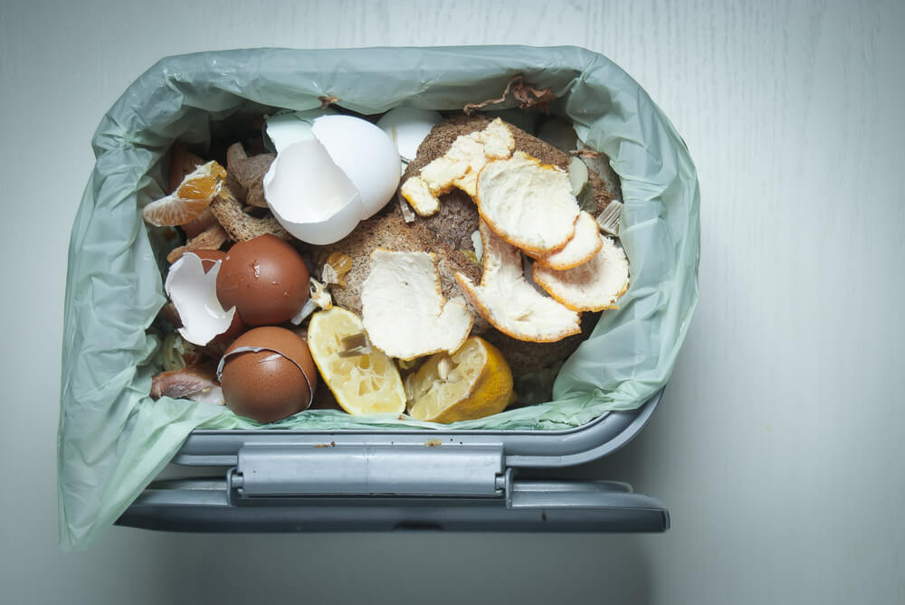 How to Create an Indoor Compost Bin that Doesn't Smell