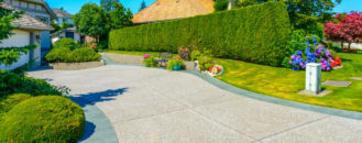 How to Get a Living Privacy Fence