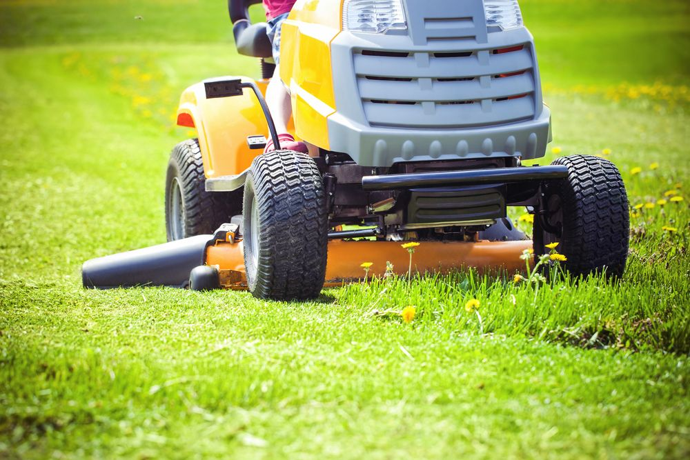 Scalping puts your lawn at risk.