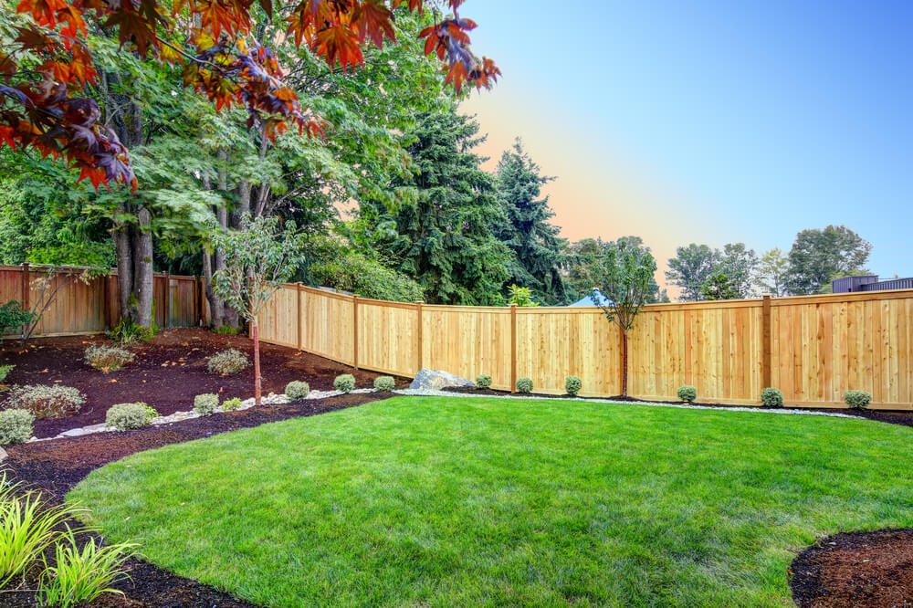 3 Ways to Plan a Small Yard Green Space