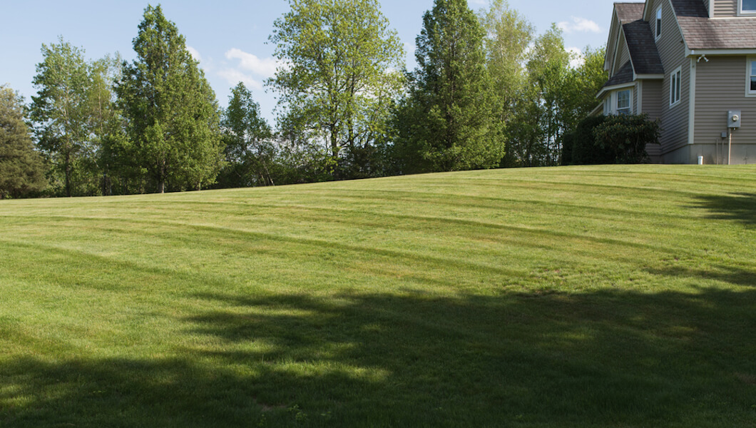 Stripe Your Lawn Subtle Style