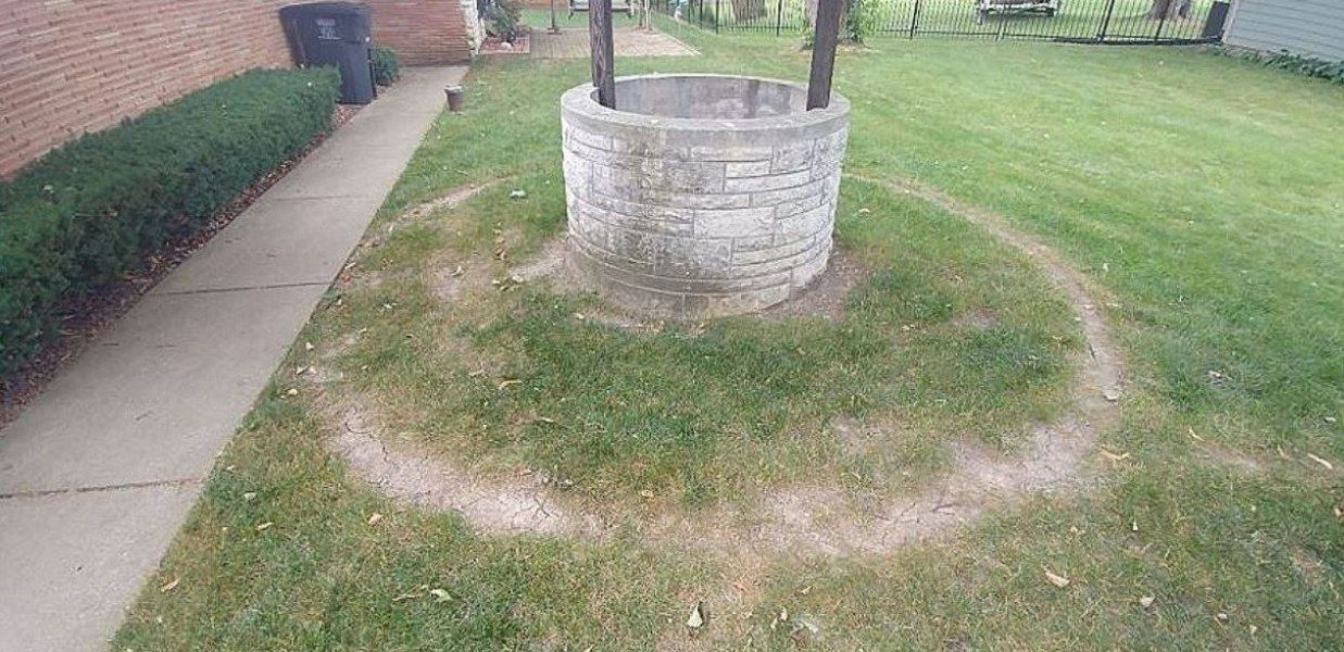 Repeatedly mowing in a circle around this well well during has caused thinning.