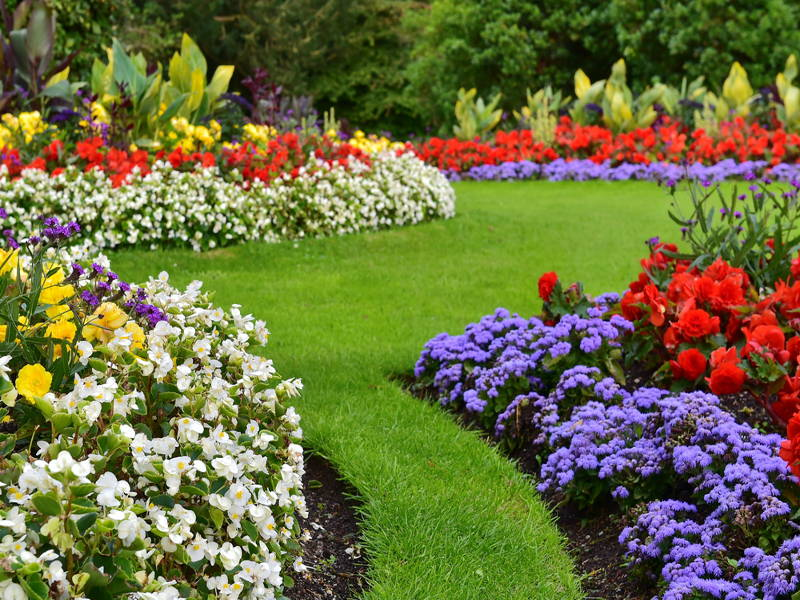 landscape ideas for selling a home