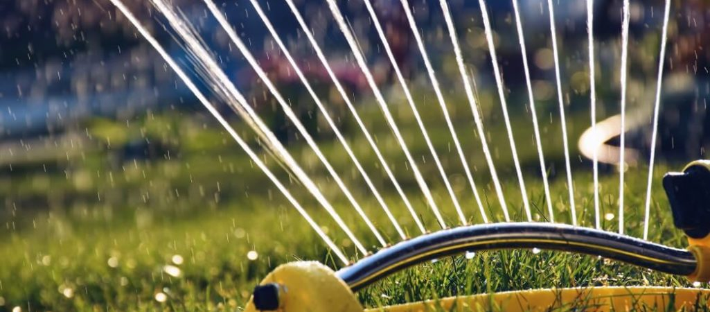How Much Should You Water Your Lawn in Spring and Summer?