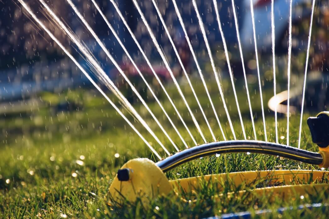 Water Your Lawn Sprinkler Setup