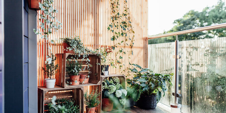 Container Gardens: Landscaping for Renters